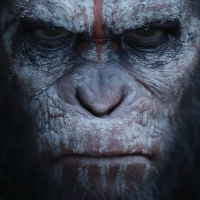 MMT Quick Review of 'Dawn of the Planet of the Apes'