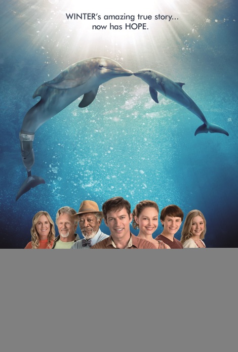 Dolphin Tale 2 (photo: Waner Bros. Pictures)