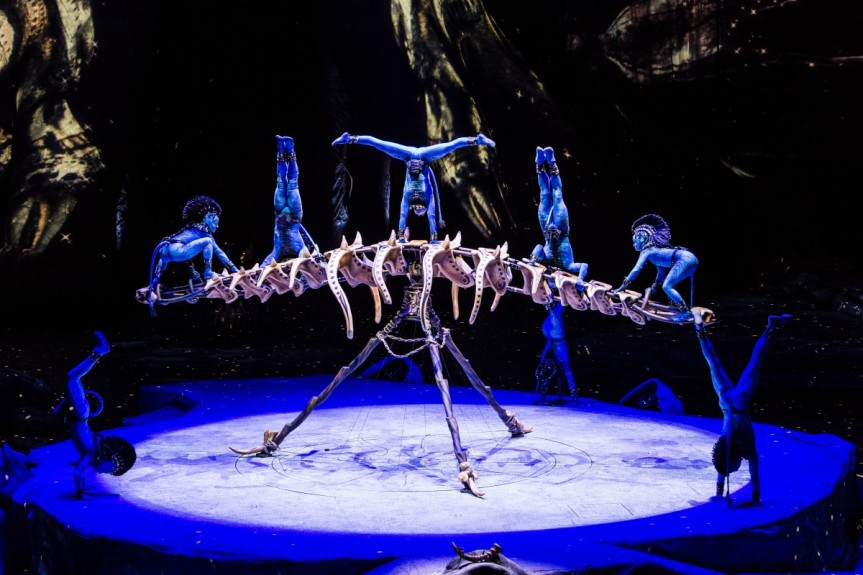 MMT Recommends TORUK: The First Flight at the Wells Fargo Center March 8-12
