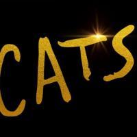MMT Quick Look: CATS