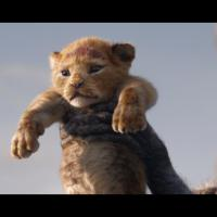 MMT Quick Review of THE LION KING